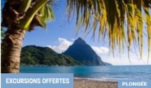 Entre Panama & Martinique (Colón-Fort-de-France)