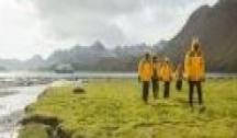 Îles Falkland, Géorgie du Sud & Antarctique (Ushuaia) avec Accompagnateur Francophone