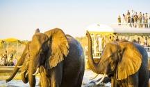 L'Afrique Australe: Expérience Inédite aux Confins du Monde (11A_CLPP)