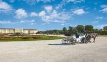 Reliez le Danube au Rhin & Suivez la Route Romantique en Croisière (VNS_PP) 4 Ancres MS Beethoven ou Modigliani