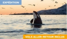 Ultima Thulé, l'Éverest Horizontal (Kangerlussuaq) Vols Inclus Croisière Expédition