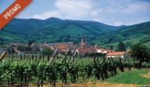 L'Alsace Pittoresque & Gourmande (SBS) 4 Ancres