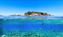 Seychelles, Le Jardin d'Eden (Mahé)